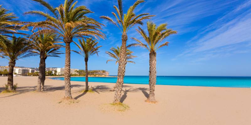 Property For Sale Costa Blanca South