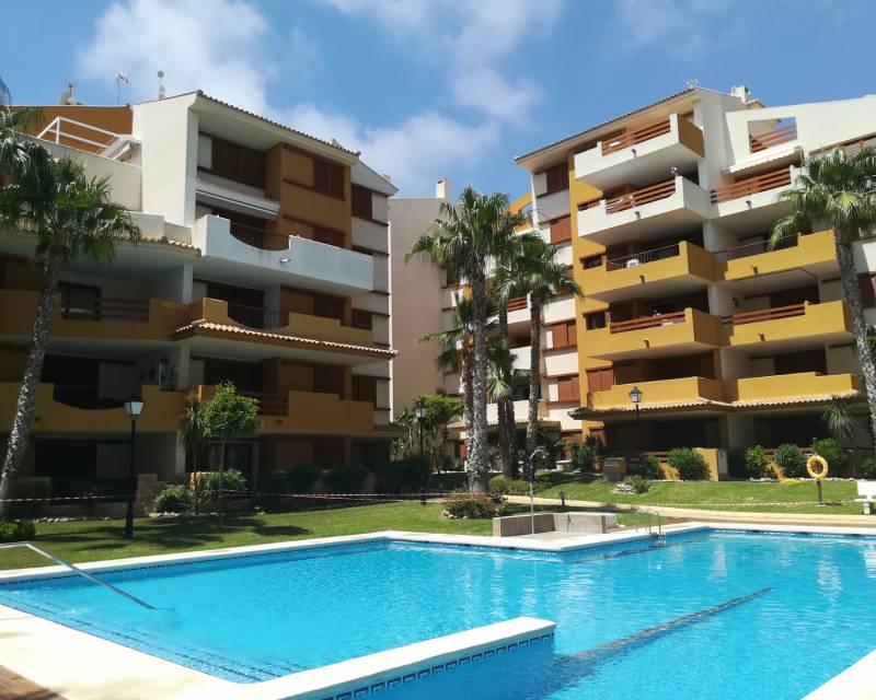 Apartment - New Build - Punta Prima - Costa Blanca South